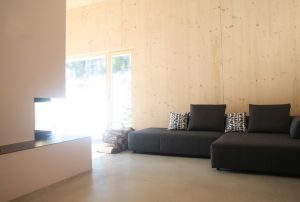 Wohnzimmer mit gemütlichem Sofa und Kamin