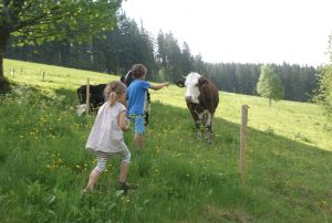 Kinder beobachten Kühe am früheren Seilerhansenhof