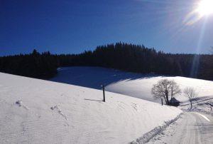 Spaziergang vom Seilerhansenhof Richtung Escheck