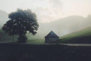 Morgenstimmung im Herbst