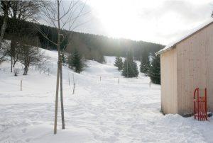 Schlitten Winter Garten Seilerhansenhof